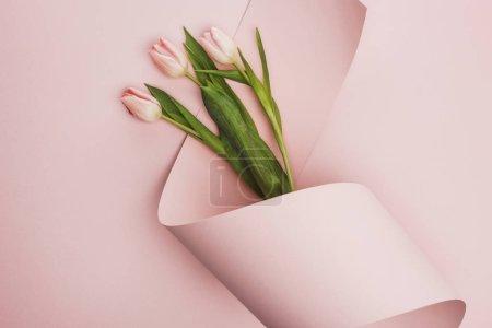 Foto de Vista superior de tulipanes envueltos en papel remolino sobre fondo rosa - Imagen libre de derechos