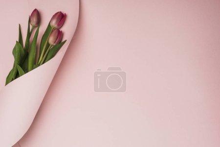 Photo pour Vue du haut des tulipes violettes enveloppées dans du papier tourbillonnant sur fond rose - image libre de droit