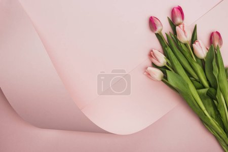 Photo pour Vue du haut des tulipes roses et violettes près d'un tourbillon de papier sur fond rose - image libre de droit