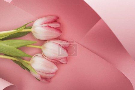 Foto de Visión superior de los tulipanes de primavera florecientes en las ciénagas de papel rosado. - Imagen libre de derechos