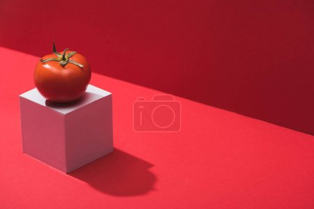 fresh ripe tomato on cube on red background