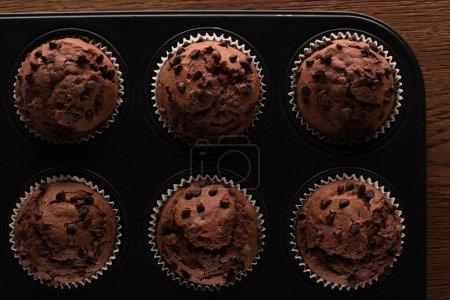 Draufsicht auf frische Schokoladenmuffins in Muffinform auf Holzoberfläche