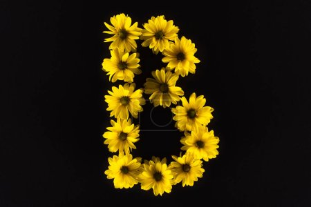 Photo for Top view of yellow daisies arranged in letter B isolated on black - Royalty Free Image