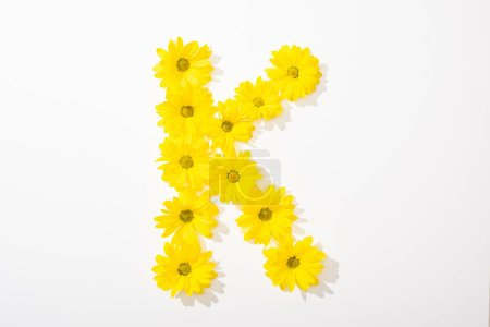 Photo for Top view of yellow daisies arranged in letter K n white background - Royalty Free Image
