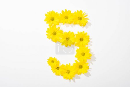 Photo for Top view of yellow daisies arranged in number 5 on white background - Royalty Free Image