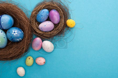 Photo for Top view of colorful Easter eggs in nests on blue background - Royalty Free Image