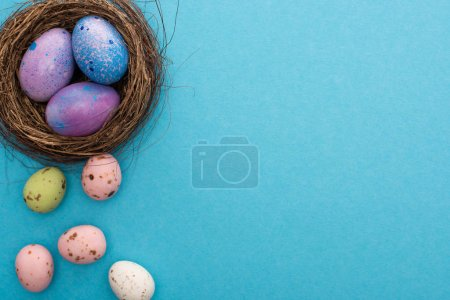 Photo for Top view of nest with purple chicken and quail eggs on blue background - Royalty Free Image