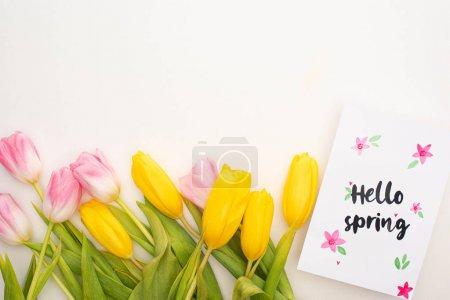 Photo pour Vue du dessus des tulipes jaunes, roses et carte avec lettrage printemps bonjour sur fond blanc - image libre de droit
