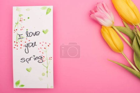 Photo for Top view of tulips and card with I love you spring lettering on pink - Royalty Free Image