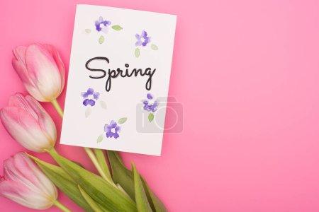 Foto de Vista superior de flores y tarjeta con letras de primavera sobre fondo rosa - Imagen libre de derechos