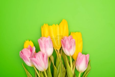 Foto de Top view of pink and yellow tulips on green background, spring concept - Imagen libre de derechos