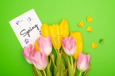 Top view of yellow and pink tulips, card with spring lettering and decorative hearts on green background