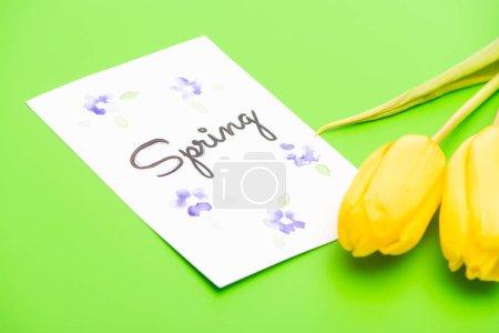 Photo pour Carte avec lettrage à ressort et tulipes jaunes sur fond vert - image libre de droit
