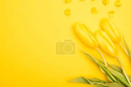 Top view of tulips and decorative hearts on yellow background, spring concept