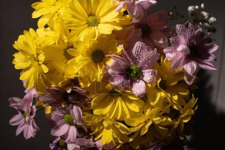 Foto de Bouquet of yellow and violet daisies with water drops - Imagen libre de derechos