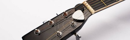 Photo for Close up view of guitar picks under strings on white background, panoramic shot - Royalty Free Image