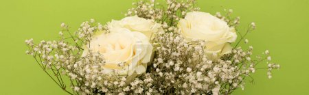 Photo pour Top view of fresh bouquet of flowers isolated on green, panoramic shot - image libre de droit