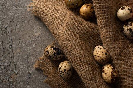 Foto de Top view of quail eggs on sackcloth on grey concrete background - Imagen libre de derechos