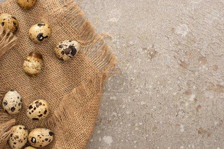 Foto de Top view of quail eggs on sackcloth on grey cement background - Imagen libre de derechos