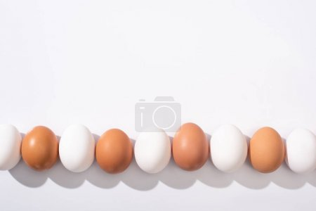 Photo for Top view of white and brown chicken eggs on white surface - Royalty Free Image