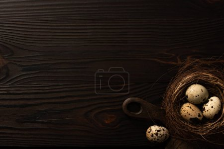 Photo for Top view of quail eggs in brown nest on chopping board on dark wooden surface - Royalty Free Image