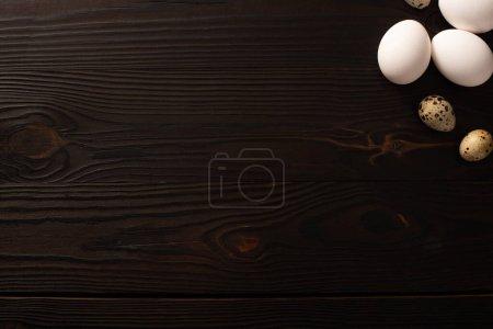 Photo pour Vue du dessus des œufs de poulet blanc et des œufs de caille sur une surface en bois brun - image libre de droit