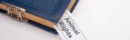 Photo pour Plan panoramique de carte blanche avec inscription des droits des animaux dans le livre bleu sur fond blanc - image libre de droit