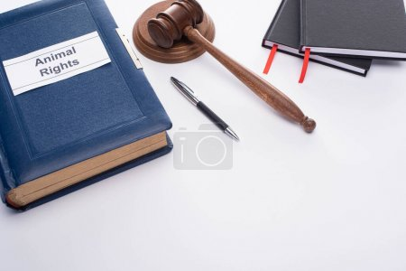 Photo pour Vue grand angle du marteau du juge, livre bleu avec inscription des droits des animaux, stylo et cahiers noirs sur fond blanc - image libre de droit