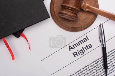 Photo pour Vue du dessus des carnets noirs, inscription des droits des animaux, marteau et crayon du juge sur fond blanc - image libre de droit
