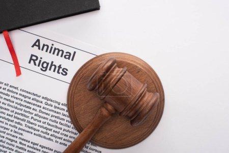 Photo pour Vue du haut du marteau du juge sur l'inscription des droits des animaux et carnet noir sur fond blanc - image libre de droit