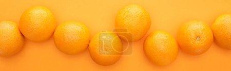 Photo pour Vue de dessus des oranges entières juteuses mûres sur fond coloré, panoramique - image libre de droit