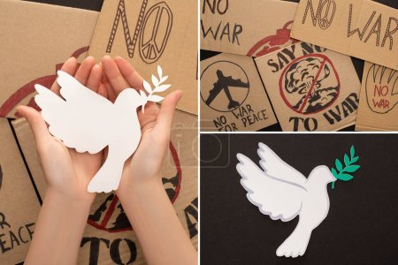Photo for Collage of woman holding white dove above no war placards on black background - Royalty Free Image