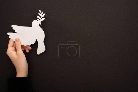 Photo pour Vue partielle de la femme tenant une colombe en papier blanc sur fond noir - image libre de droit