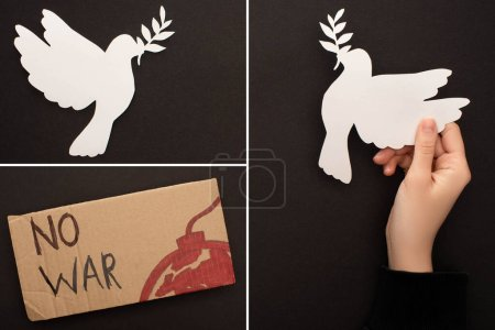 Photo pour Collage de plaque en carton sans lettrage de guerre ni bombe, colombe blanche et main féminine sur fond noir - image libre de droit