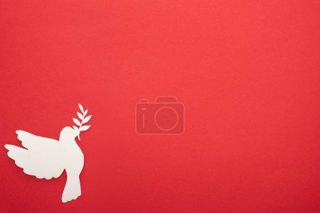 Photo pour Vue de dessus de colombe blanche comme symbole de paix sur fond rouge - image libre de droit