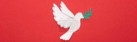 Photo pour Vue du dessus de la colombe blanche comme symbole de paix sur fond rouge, culture panoramique - image libre de droit