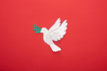 Photo for Top view of white dove as symbol of peace on red background - Royalty Free Image