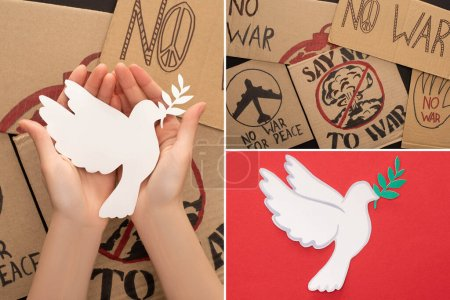 Photo pour Collage de mains féminines, plaques en carton sans lettrage de guerre et colombe en papier blanc sur fond rouge - image libre de droit