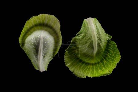 Photo pour Vue de dessus des feuilles de chou vert humide isolées sur noir - image libre de droit
