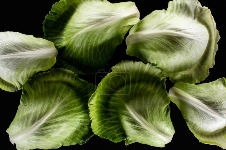 top view of wet green cabbage leaves isolated on black