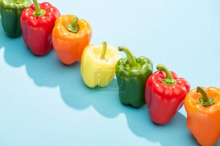 fresh colorful bell peppers in row on blue surface
