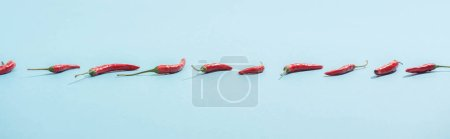 Photo for Fresh red chili peppers on blue surface, panoramic shot - Royalty Free Image