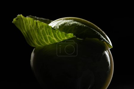 Photo for Close up view of wet green cabbage with leaf isolated on black - Royalty Free Image