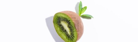 Photo for Panoramic concept of organic kiwi fruit half near peppermint leaves on white - Royalty Free Image