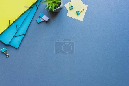 Photo pour Vue du dessus des chemises en papier, gommes à effacer avec pinces à reliure et plante sur fond bleu - image libre de droit