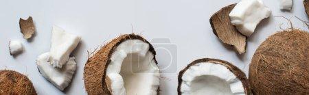 Photo pour Vue du dessus de noix de coco fraîches, entières et fissurées sur fond blanc, plan panoramique - image libre de droit
