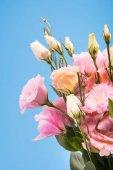"""Постер, картина, фотообои """"Красивые розовые цветы"""""""
