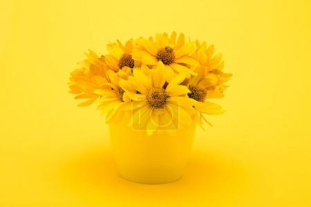 Photo for Close-up view of beautiful yellow chrysanthemum flowers in vase isolated on yellow - Royalty Free Image