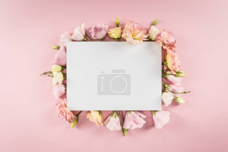 Photo for Top view of blank greeting card and tender eustoma flowers isolated on pink - Royalty Free Image