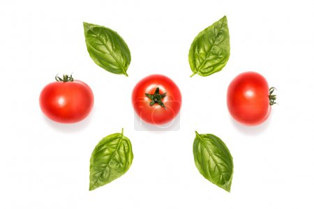 Photo for Composition of tomatoes with basil leaves isolated on white - Royalty Free Image
